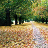 Loudoun County - Fall Season